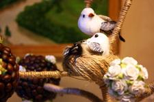 (02.01.2014 © ATola) Топиари - Кофейное дерево