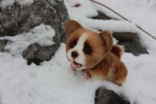 (22.01.2018 toys) Совместный пошив щенка Корги - от Анастасии Фролковой